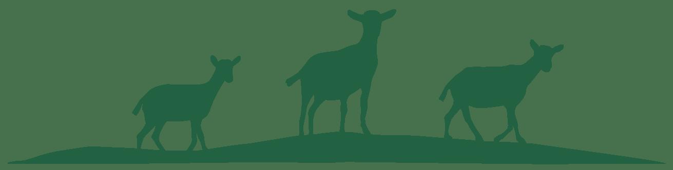 Summerhill Goat Dairy logomark